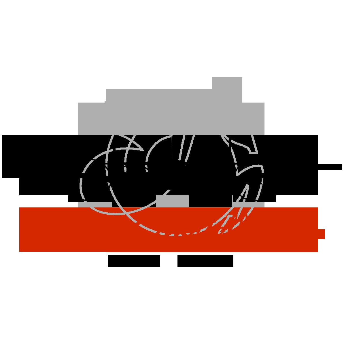 Logo-F-BGNJ